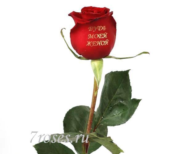 Для жени цветы