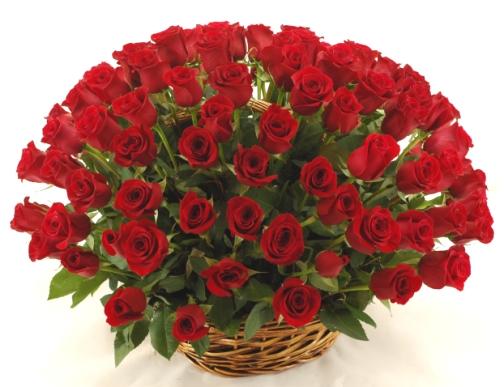 Доставка цветов по заказу в спб можно ли покупать живые цветы на кладбище